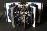 Van 22 november 2008 tot 16 januari 2009 wordt er in Galerie Bibliotheek Zelhem een groepsexpositie gehouden van Nederlandse papierkunstenaars. Participanten: Ingrid Siliakus, Miriam Londono, Peter Gentenaar, Pat Gentenaar, Nikki van Es, Luis Acosta. Voor mee info, zie navolgende website: www.galerie-bibliotheek-zelhem.nl