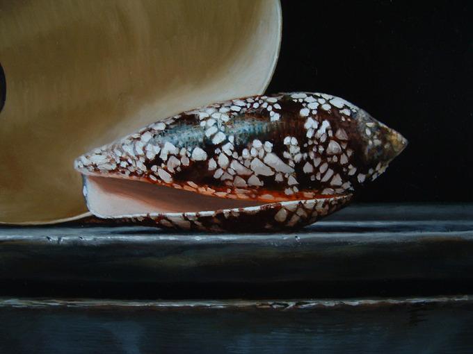 Detail 1 van schelpen 2