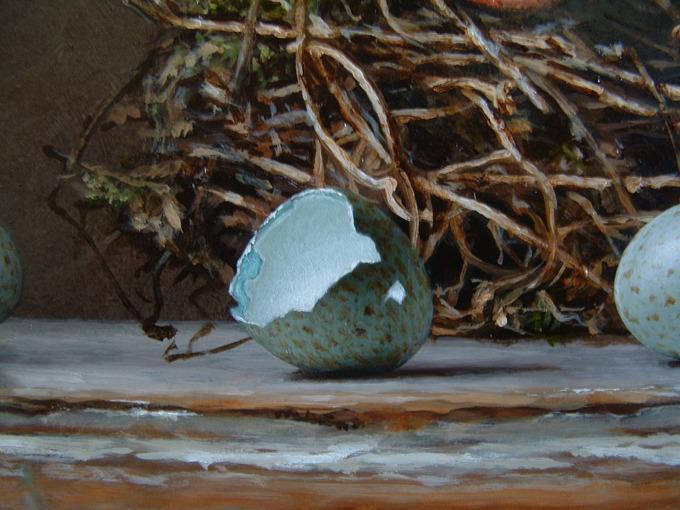 Detail 3 van vogelnesten