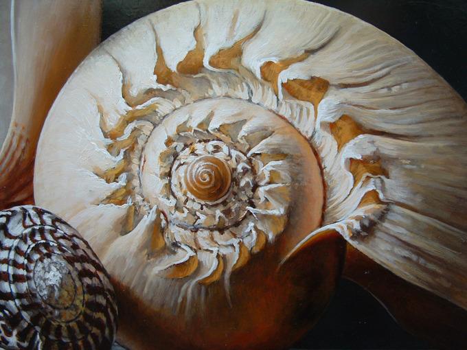 Detail 2 van schelpen 1
