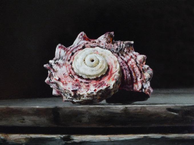 Detail 1 van lantaren en schelpen