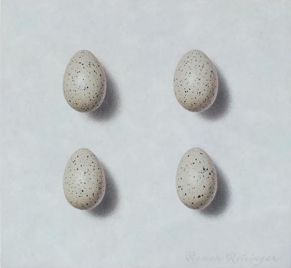 Stilleven met meerkoet eieren
