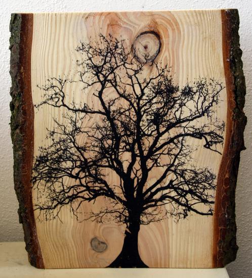 Eik op hout met schors