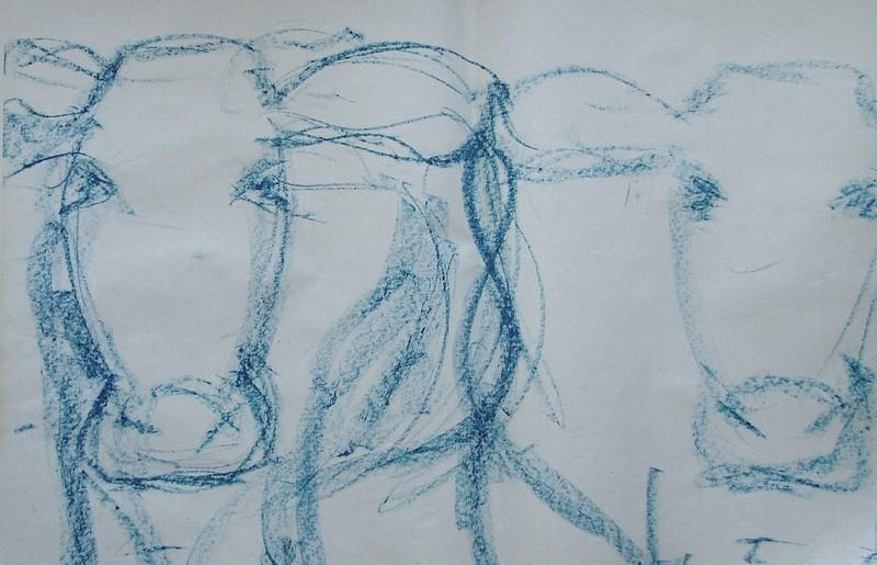 Koeien (schets)