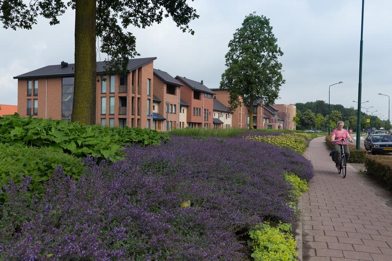 GreentoColour Boxmeer