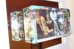 Driedimentionale collages op glas, gevat in dozen. Eventueel met bijkomende spiegels.