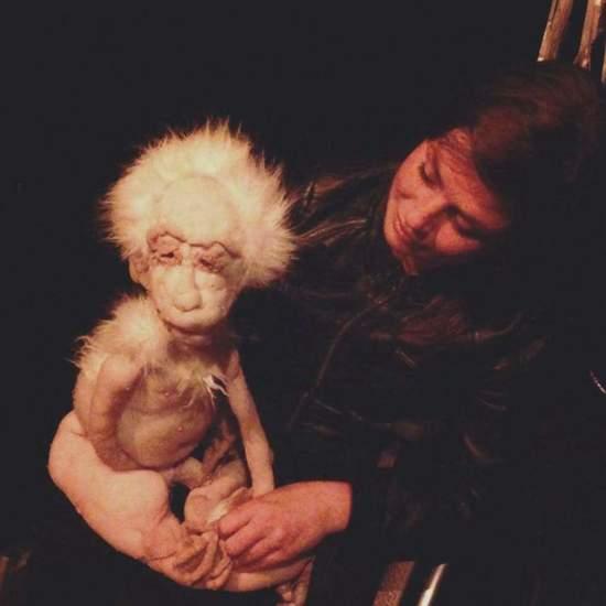 Oscar het aapje