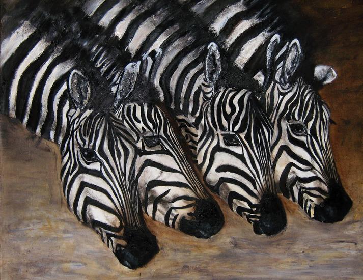 Drinkende zebra's