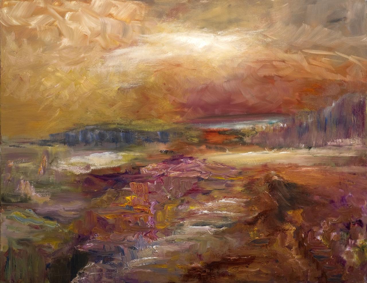 landschap met moeras