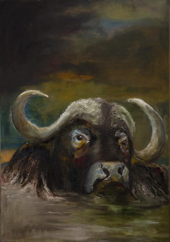 Buffel in water