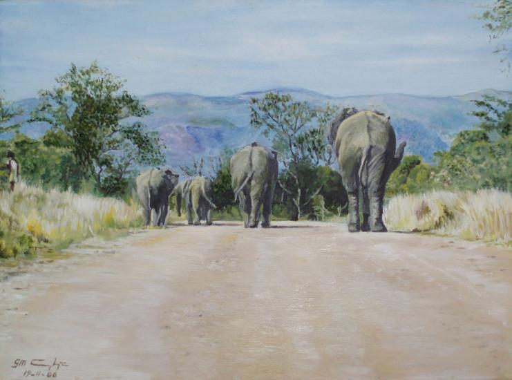 Voetgangers in het Krugerpark