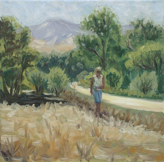 Landweg in Spanje