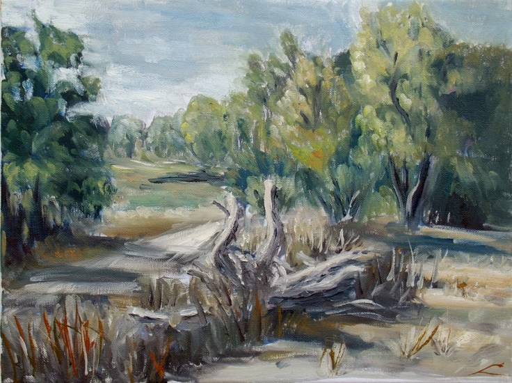 Landweg in de buurt van Canicosa
