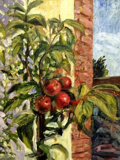 Kleine appelboom