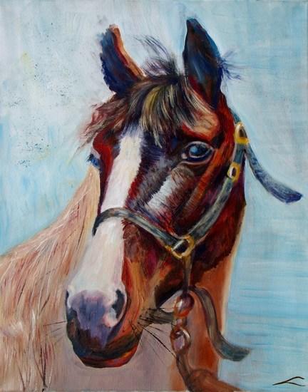 Paardportret