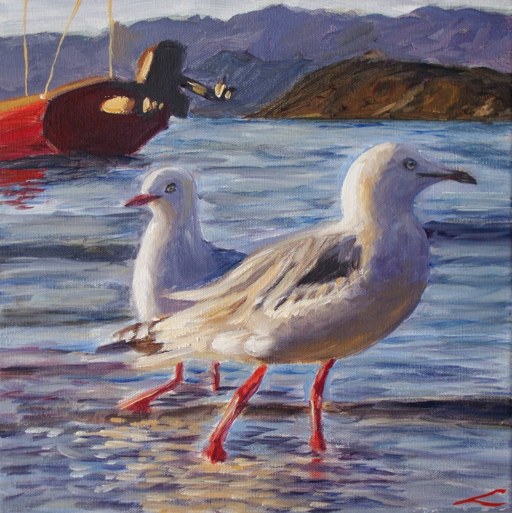 Lopen zeemeeuwen