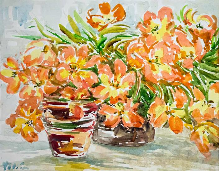 Geel-oranje tulpen in potten