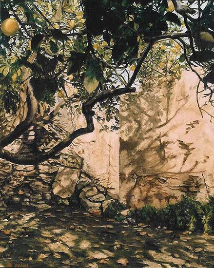 Citroenboom bij ruïne