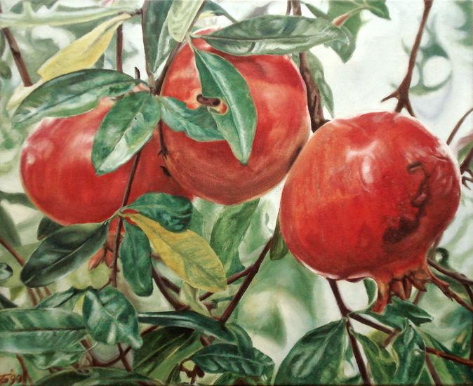 granaatappelen
