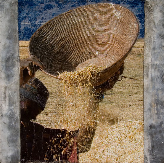 Kaf van het koren scheiden