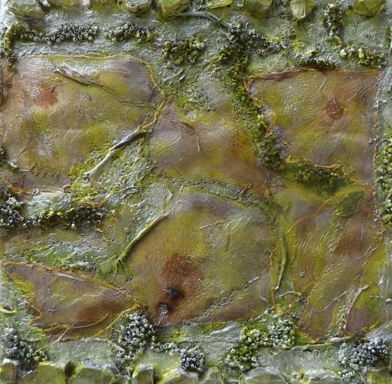 Natuurassemblage klaprozen