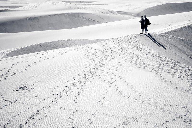 Walking in the dunes II