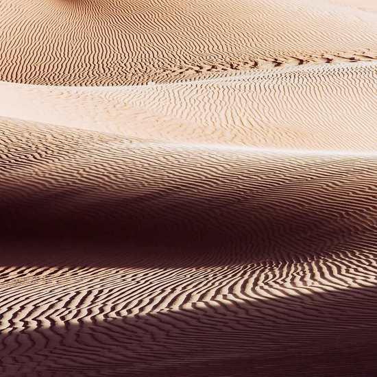 Woestijn 6