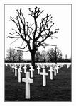 Enkele beelden gemaakt op de indrukwekkende Amerikaanse begraafplaats te Margraten. Herdenkingsplek voor de gevallenen in de tweede wereldoorlog