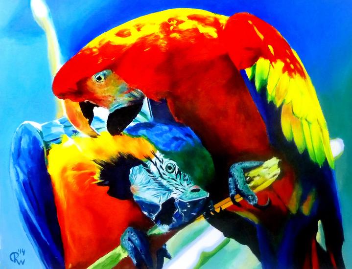De Papegaaien