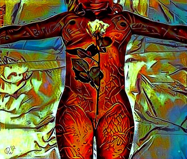 The Body # 13